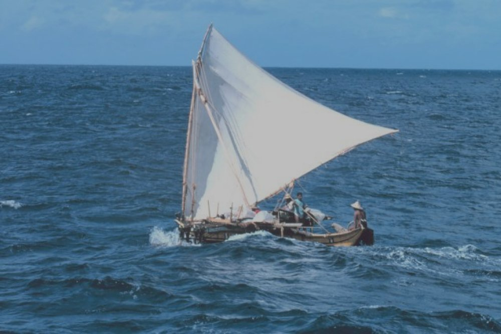 Oppo navigue à vue vers l'international
