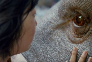Okja, Orange is the New Black, Glow : quelles nouveautés sur Netflix en juin 2017 ?