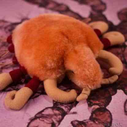 peluches-mst-morpions