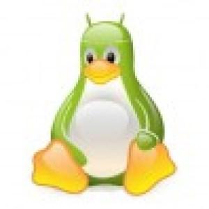 Les tablettes sous Honeycomb peuvent être utilisées (montées) avec Linux