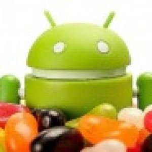 Samsung publie la liste des terminaux qui seront mis à jour vers Jelly Bean
