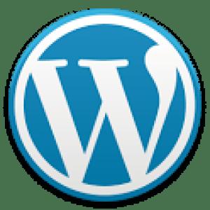 WordPress, une nouvelle interface pour la mise à jour '2.3'