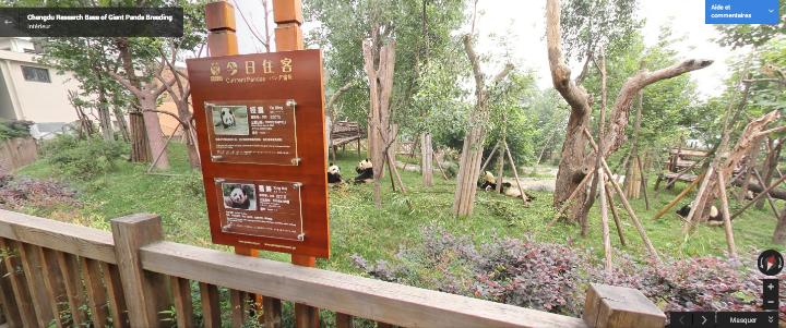 Google Street View s'invite dans les parcs animaliers