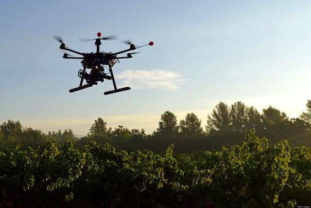 Lutter contre la déforestation grâce à des drones, c'est possible
