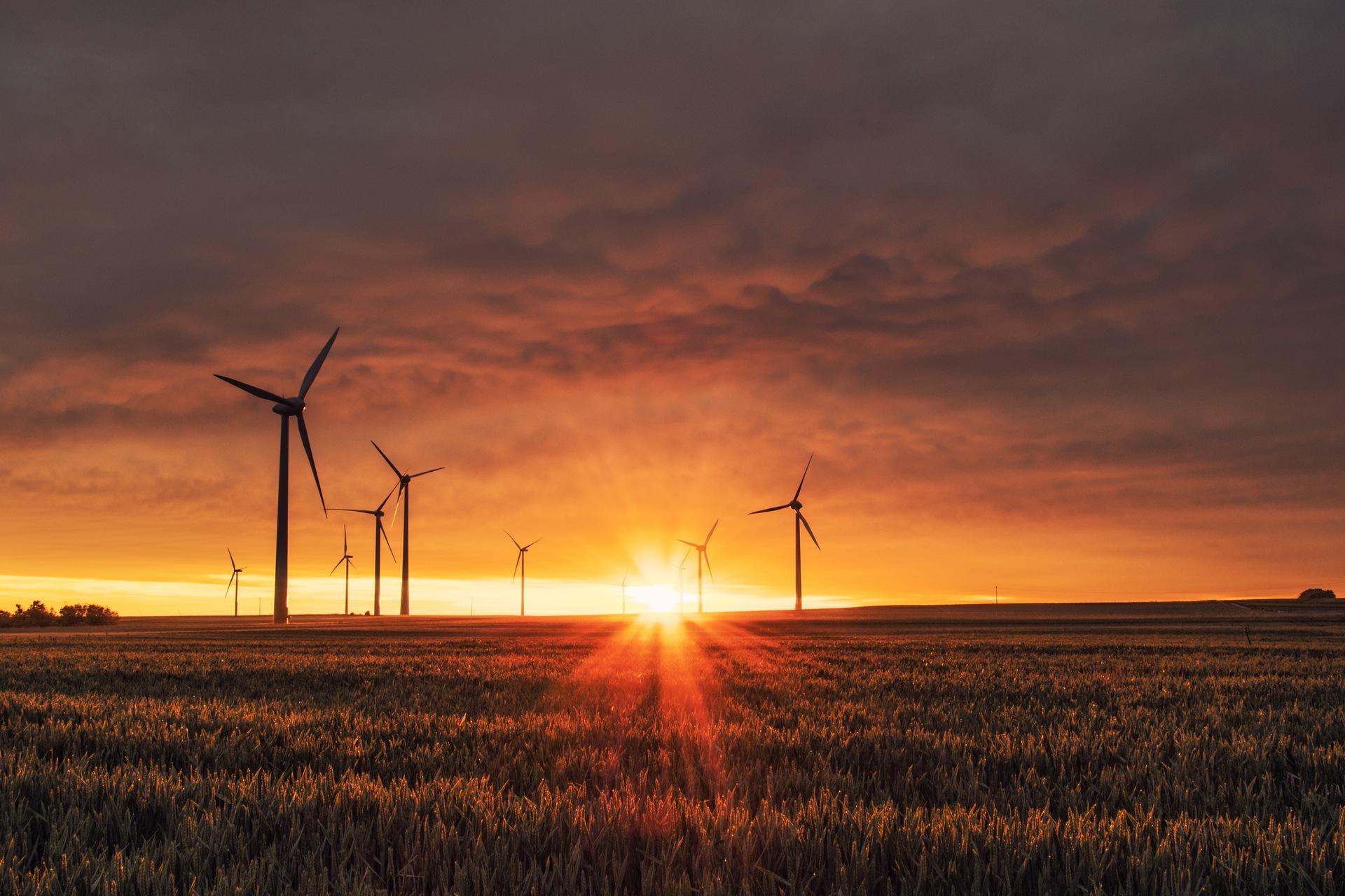 En 2017, Google dépendra à 100 % des énergies renouvelables