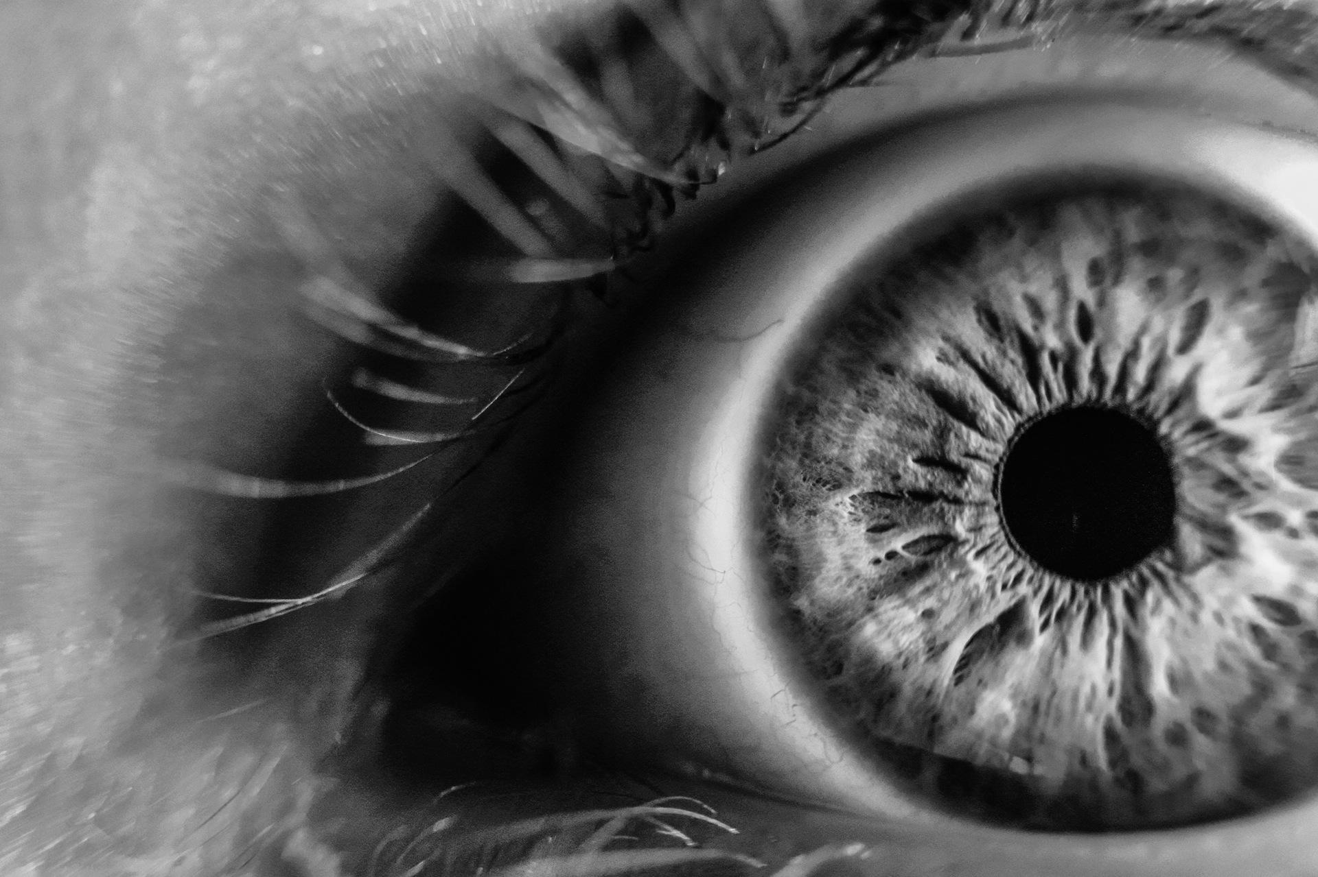 Tamron travaille sur un capteur photo plus performant que l'œil humain