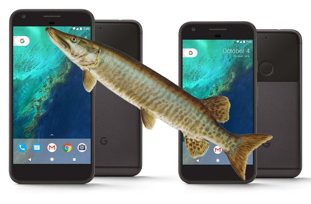 Les noms de code du Google Pixel 2 et du Google Pixel 2 XL ont fuité