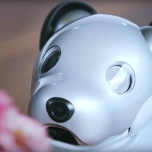 Sony ressuscite le robot chien Aibo parce que les vrais chiens c'est trop mainstream