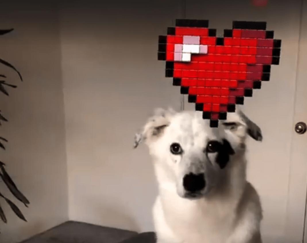 Facebook Messenger propose d'enrichir vos vidéos avec des stickers 3D