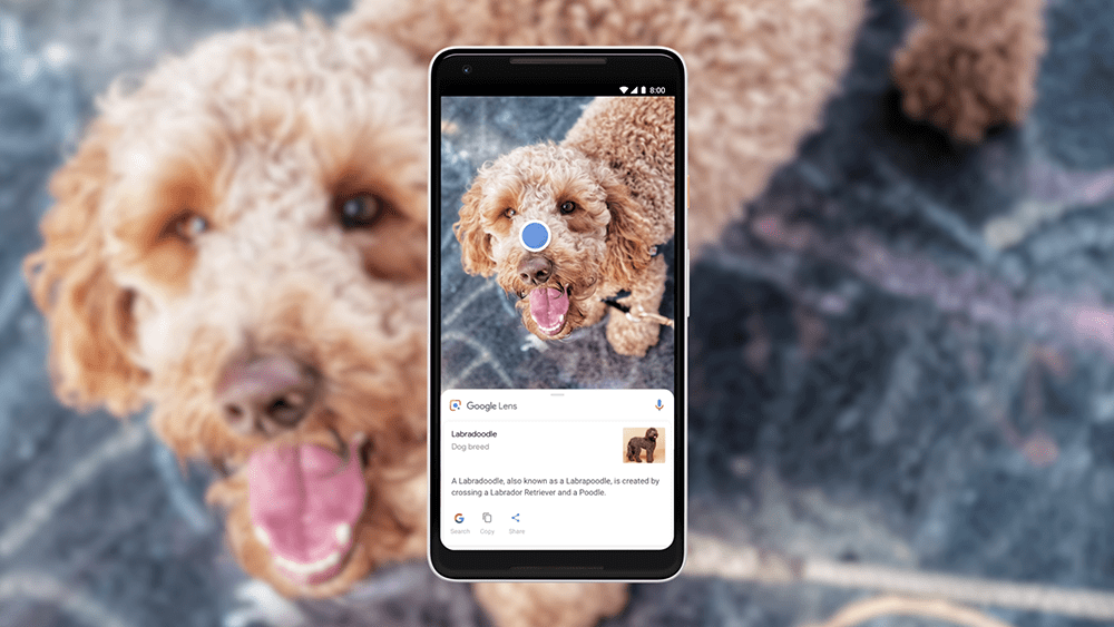 Google Lens est disponible pour tous sur le Play Store