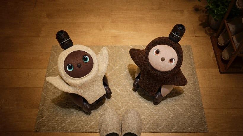 Ce robot hibou-manchot-chien ne sert à rien mais je veux quand même l'adopter