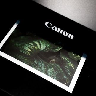 3 imprimantes à petit prix disponibles rapidement