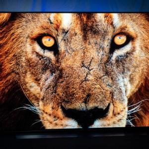 Jusqu'à demain, l'excellente TV OLED 55CX6 de LG est à prix canon sur Cdiscount