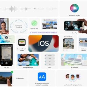 iOS 15 : vos nouveautés préférées sont FaceTime, LiveText et Focus