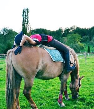 equitation-hausse-tva
