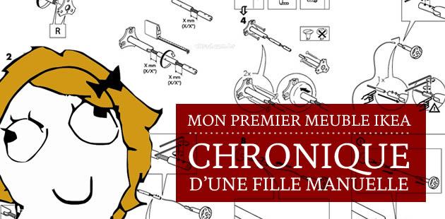 big-premier-meuble-ikea-chronique