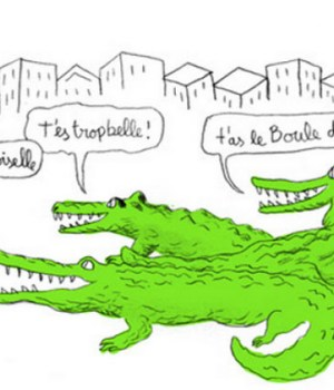 projet-crocodiles-conseils-agression