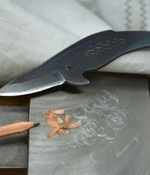 couteaux-baleines-cuisine