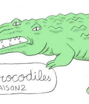 projet-crocodile-saison-2