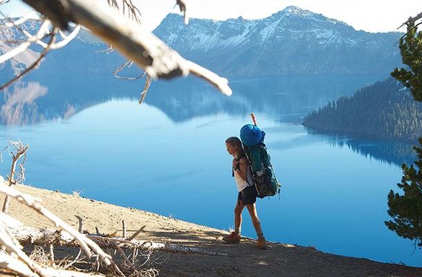 voyager-seule-wild