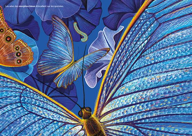 heure-bleue-papillons