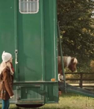 mini-cheval-brise-coeur-pub-amazon