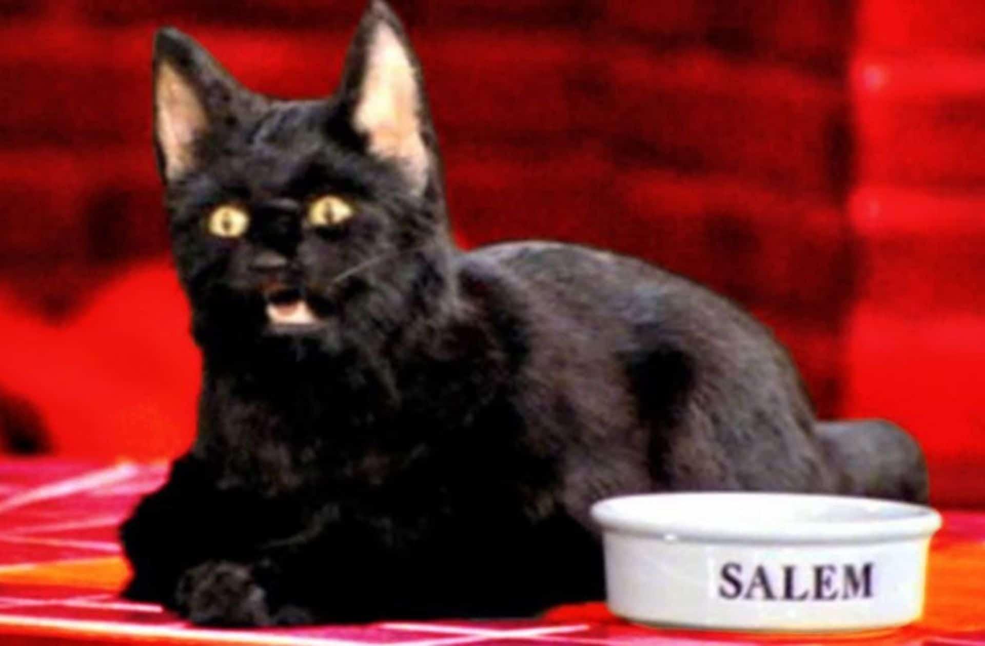 Salem_eau