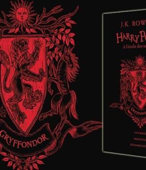 harry-potter-ecole-sorciers-edition-anniversaire