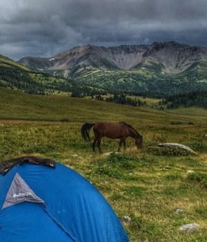 carte-postale-kazakhstan-trek-cheval