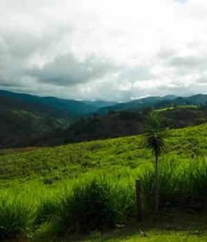 temoignage-costa-rica