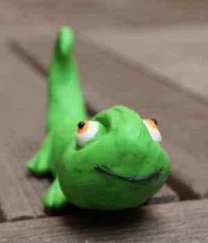 je-suis-un-caméléon-sourd-nikon