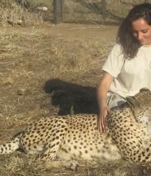 refuge-animaux-sauvages-afrique-temoignage
