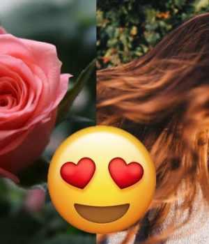 chignon-rose-coiffure