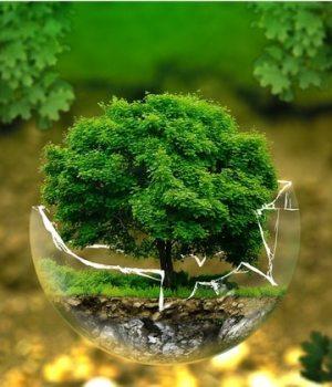world-clean-up-day-journee-nettoyage-dechets