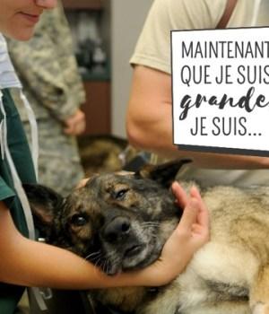 assistante-veterinaire-temoignage