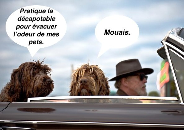 compilation-covoiturage