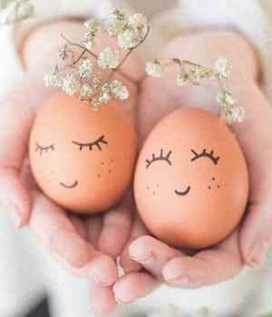 bienfaits œufs beauté