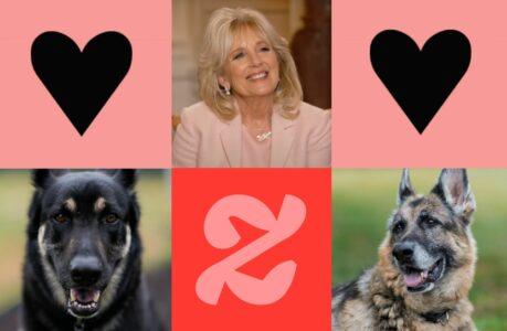 Jill Biden présente le doggy bag de luxe, à l'effigie de ses chiens Major & Champ