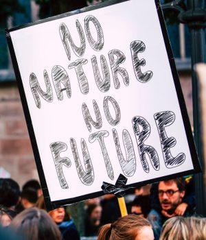 no-nature-no-future-smol