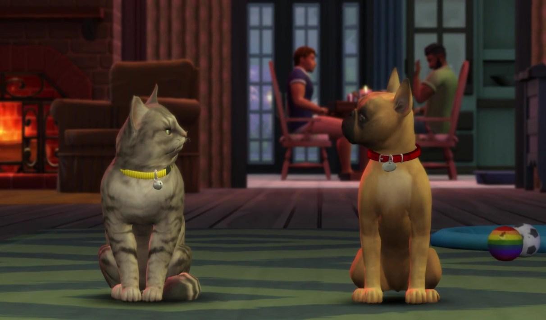 Test Les Sims 4 Chiens Et Chats Aaaaaaaaaaw